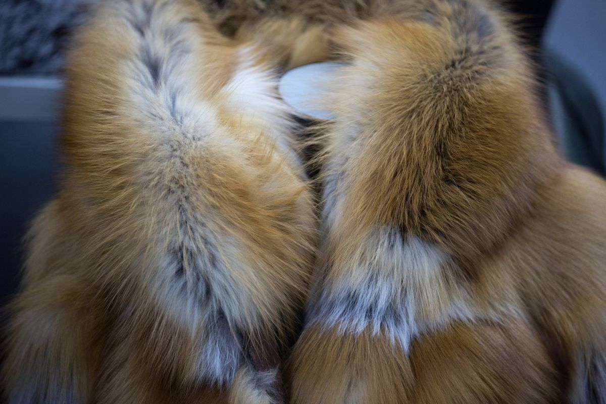 <p>Saks to Shut Down Salons as Department Stores Abandon Animal Fur thumbnail
