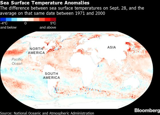 Energy Traders Watch the Polar Vortex and La Nina as Winter Nears