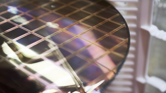 GlobalFoundries CEO Says Chipmaker Sticking to 2022 IPO Plan