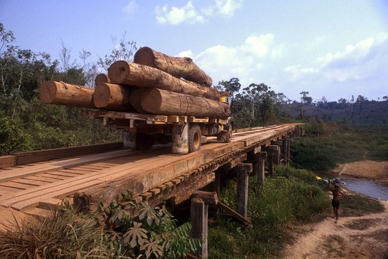 Brazil's Bolsonaro Fires Back at Amazon Deforestation Data