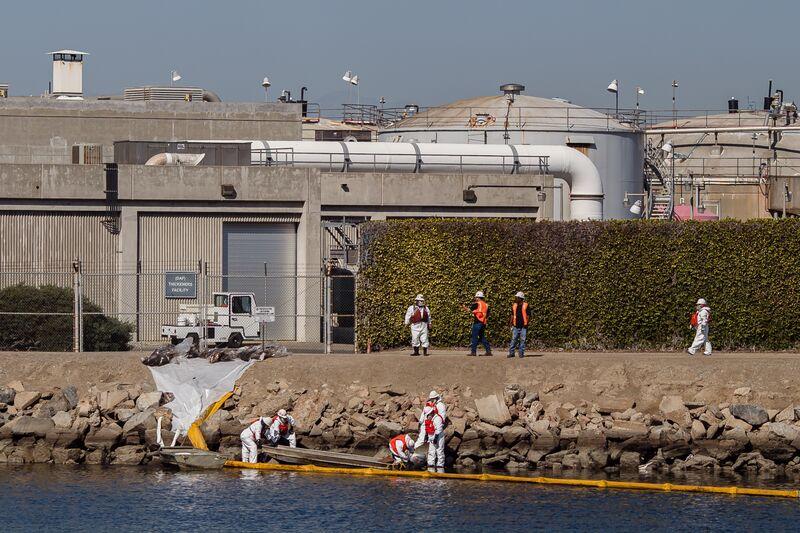 На Пляжах Южной Калифорнии Произошел Массовый Разлив Нефти