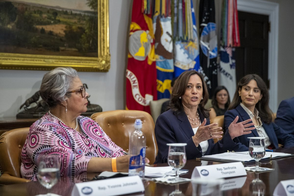 Kamala Harris Pledges to Do 'Everything in Our Power' to Protect Voting Rights