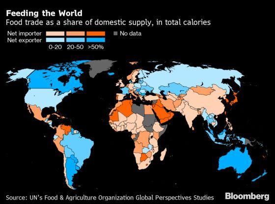 What Happens When Bread Is Scarce and Grain Exporters Speak Up