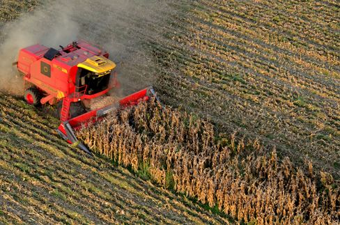 ICE Adding Grains to Lure Hedge Funds Chasing USDA Price Swings