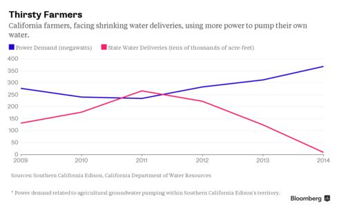 California's Thirsty Farmers