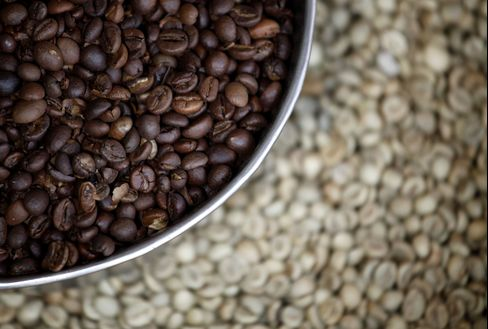 Arabica's Allure Returning for Roasters After Rout