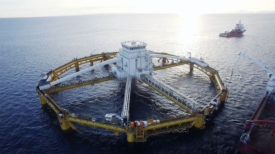 The $300 Million Plan to Farm Salmon in the Middle of the Ocean
