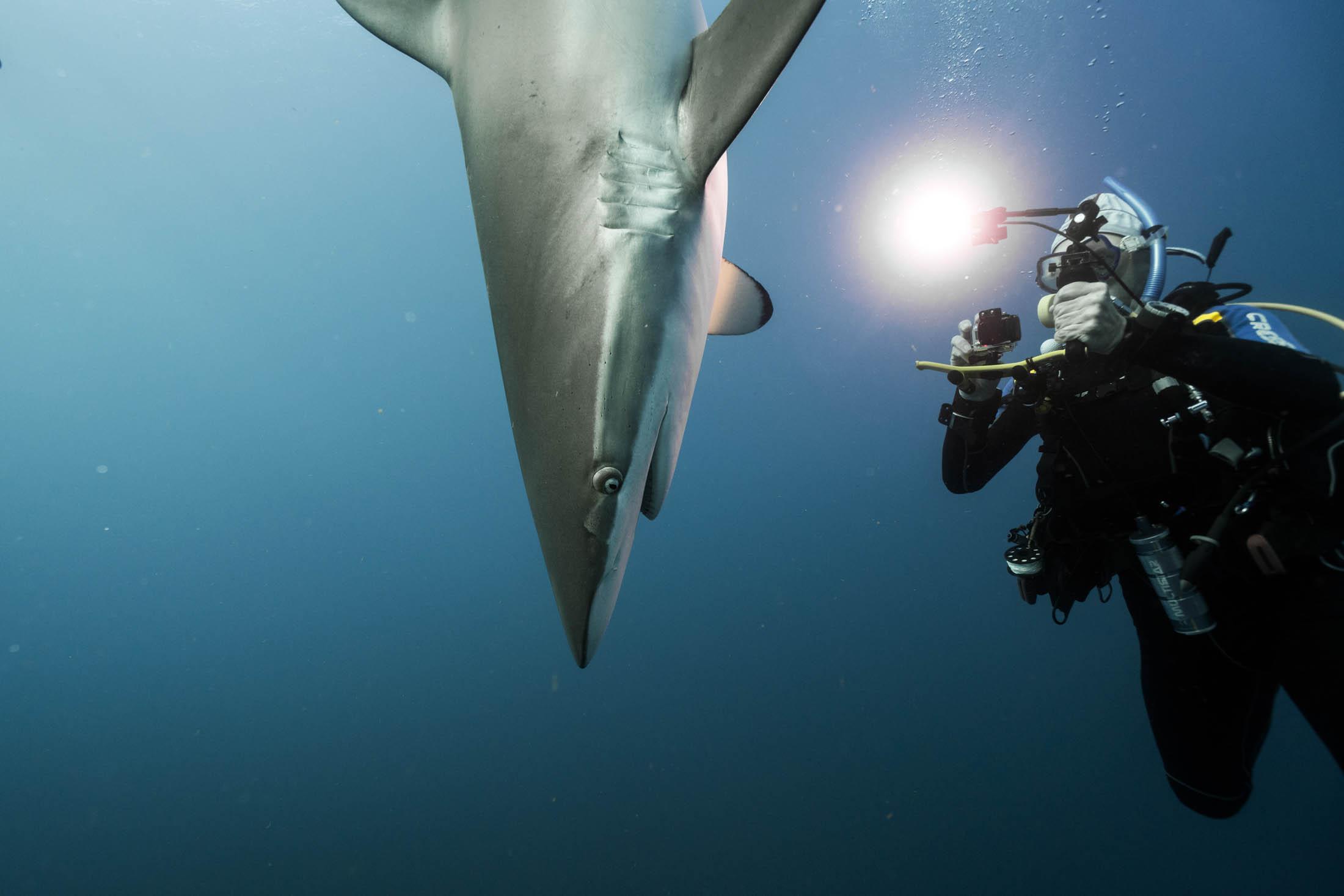 Living the Scuba Diving Dream in Cuba