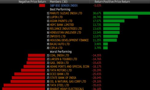 Sensex's best and worst performers in 2015