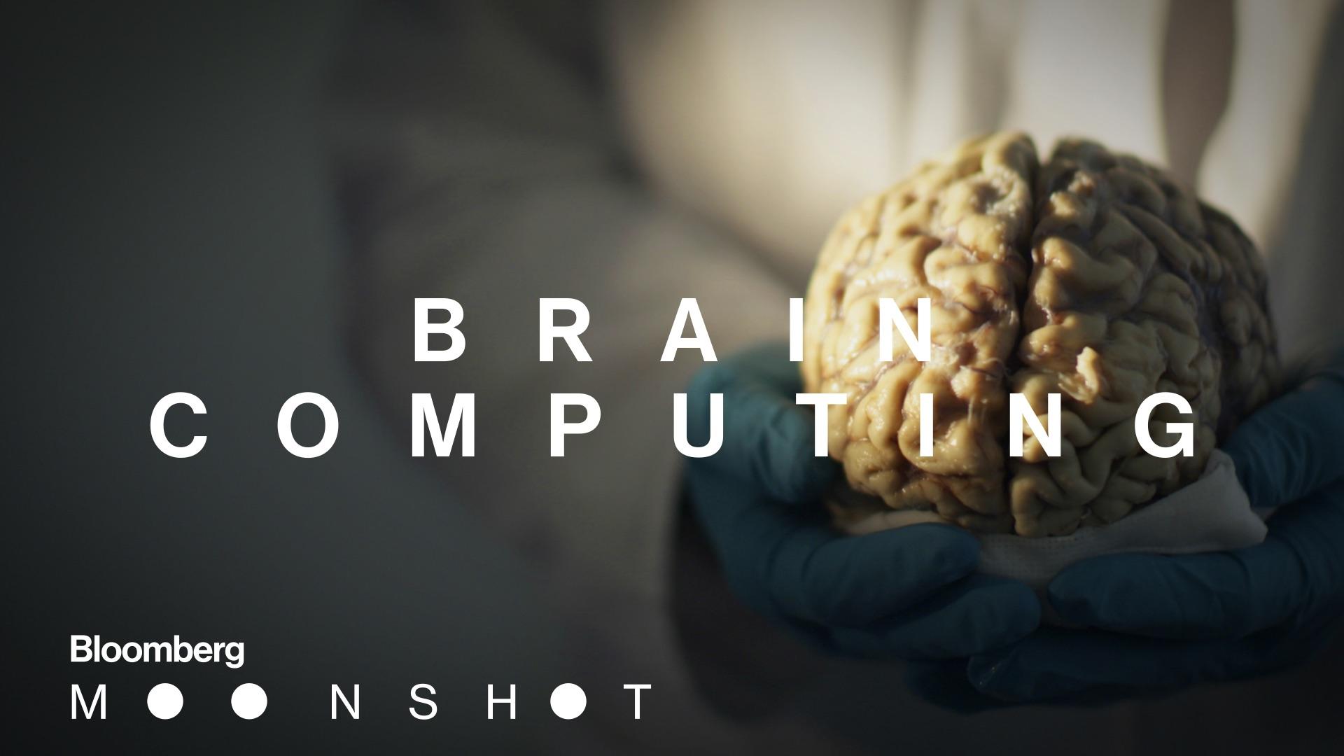 Human Brain Mapping Neuromorphic Computing