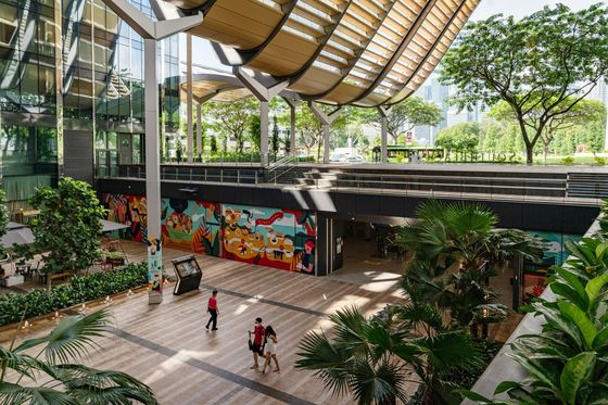 From Singapore to Rio Green Buildings Keep Tropical Tenants Cool