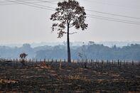 BRAZIL-FIRE-AMAZON-DEFORESTATION