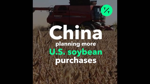 U.S. Farmers Rue China's Return to Soybean Market as 'Drop in the Bucket'