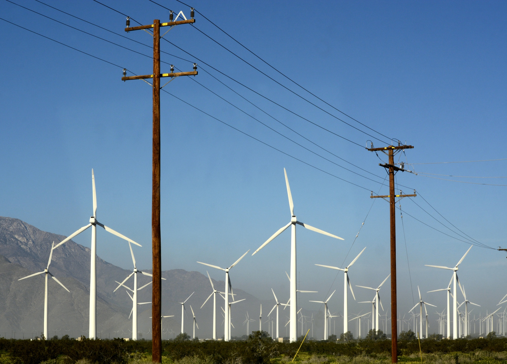 Wind turbines generate electricity near power poles and transmission lines at the San Gorgonio Pass Wind Farm near Palm Springs, California.