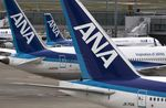 All Nippon Airways Co. (ANA) aircrafts