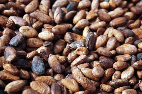 Cocoa Jumps Most Since October 2009 in N.Y.