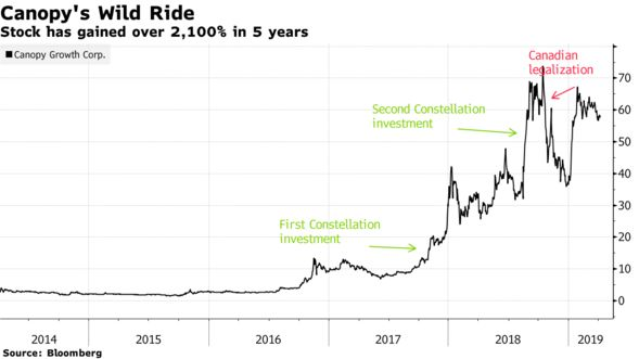 Stock has gained over 2,100% in 5 years