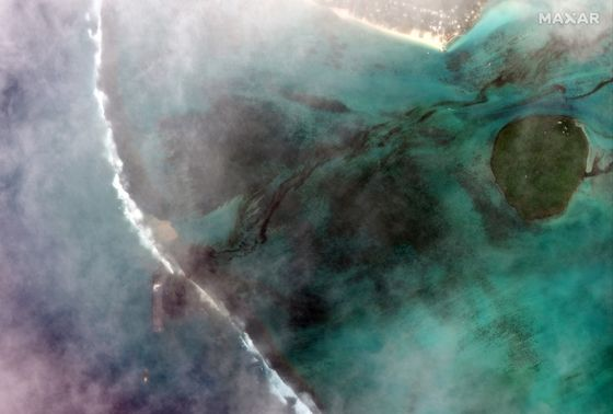 Oil Cleanup Continues on Mauritian Coast as Liability Probed