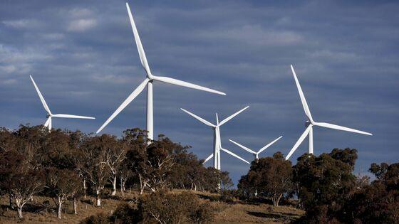 Wind Giant Iberdrola to Buy Infigen in Australia Expansion