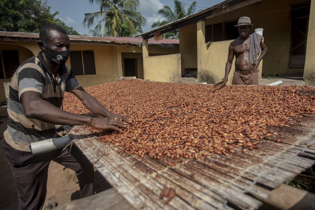Chocolate War Leaves World's Top Cocoa Producer Stuck With Beans
