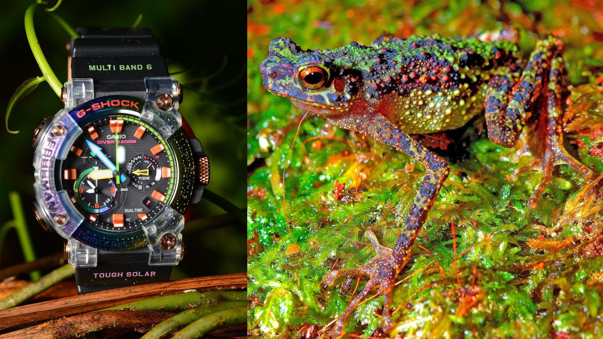 Thought Extinct, a Rainbow-Colored Frog Inspires a Pretty Snazzy G-Shock