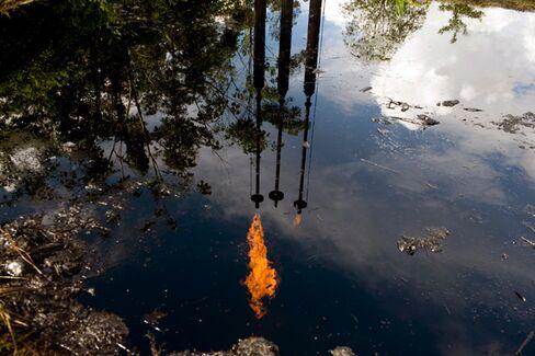Ecuadorian Court Cuts Chevron's Pollution Bill in Half