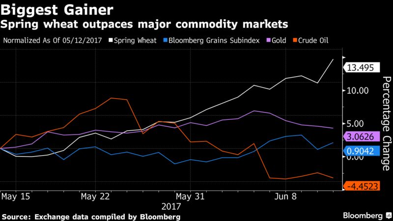 Futures Have Surged 15 Percent In The Past Month Outpacing The Gains Of All The 22 Components Of The Bloomberg Commodity Index Spring Wheat Isn T Tracked