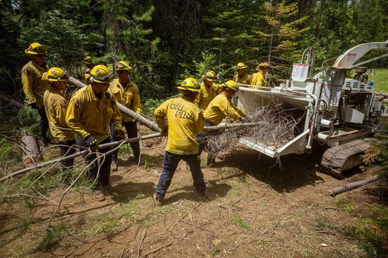 'Forever War' With Fire Has California Battling Forests Instead