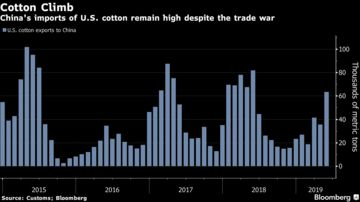 China Allows Some Tariff-Free U S  Cotton, Pork Purchases