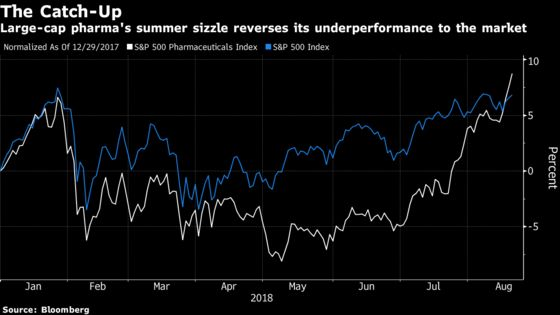 Drugmakers Extend Summer Rally as Markets Regain Footing