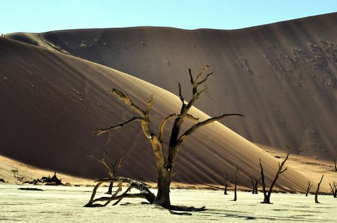 Dramatic landscapes in Sossusvlei.