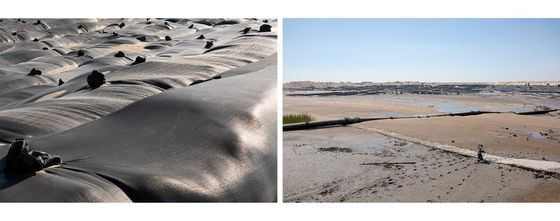 Dubai Has Palm Islands, But China Has a Sun, Moon, and Flower