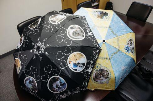 飼い猫の写真でデザインしたウォン氏の傘