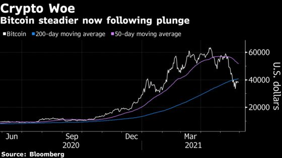 Ark's Wood Says Bitcoin Can't Be Shut Down, Rebuts ESG Fears