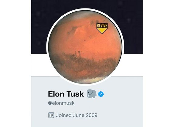 'Elon Tusk' Riddle Turns Out to Be Totally Meaningless