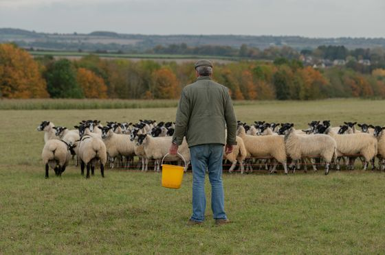 Jeremy Clarkson Bought a Farm 11 Years Ago. Now He Has to Run It