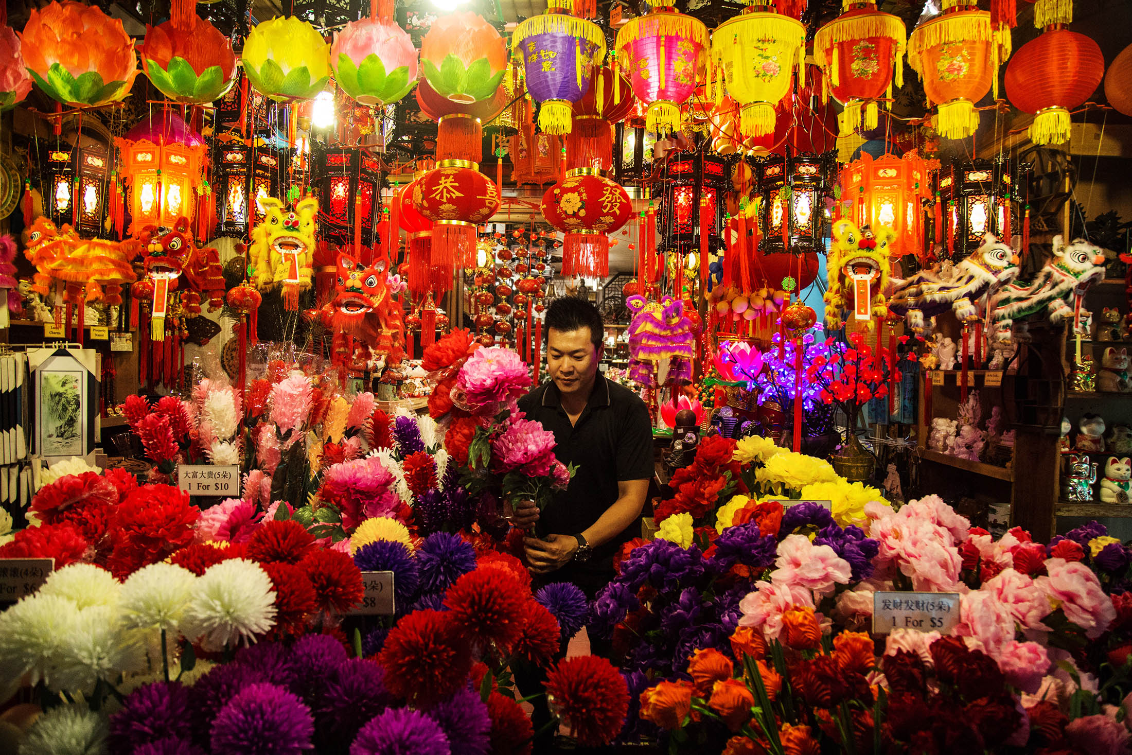 celebrate chinese new year essay Free essay: chinese new year is the most widely celebrated tradition in asia the tradition is usually celebrated on the first day of the first month on the.