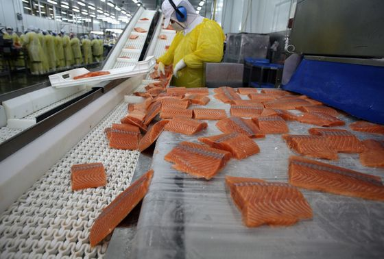 China Buying 'Practically Zero' Chilean Salmon After Covid Scare