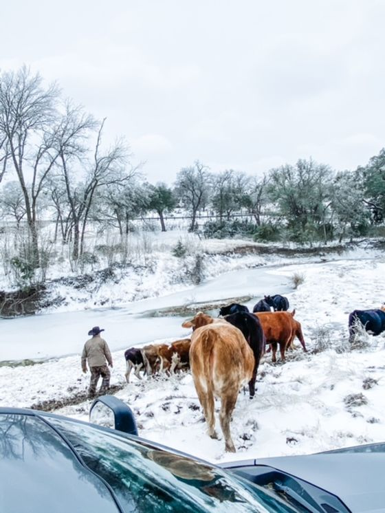 Texans' Frozen Pipes Are Warnings of Yet Another Climate Threat