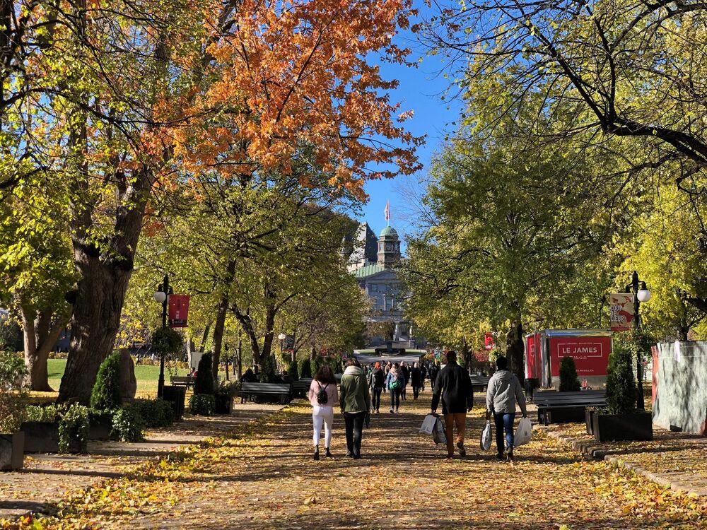 نتیجه تصویری برای McGill University