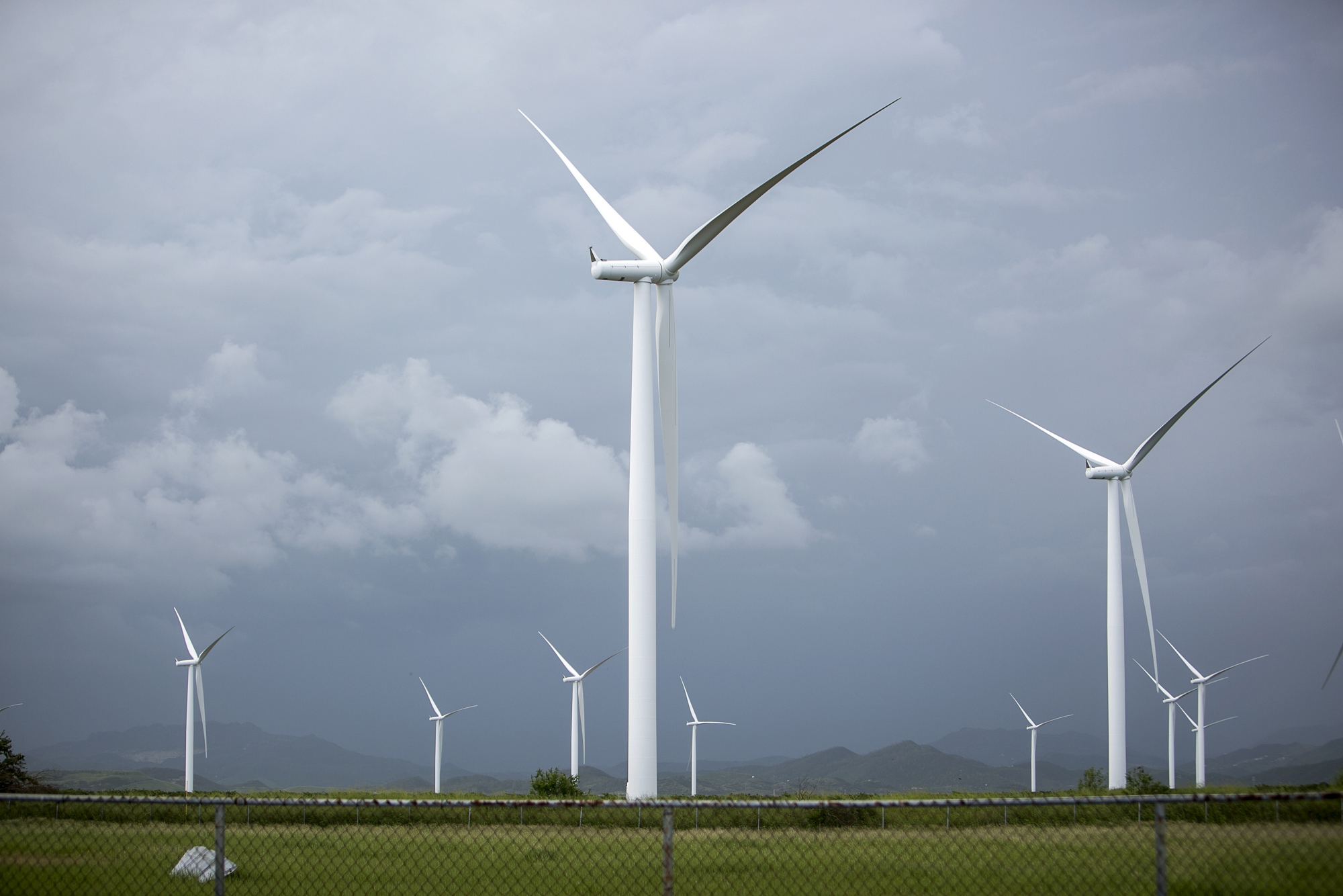 Subsidy Free Wind Power Possible in $2 7 Billion Dutch Auction