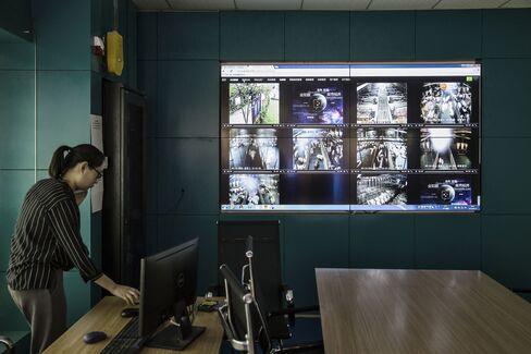 Video feeds monitor pig pens at Shen's farm.
