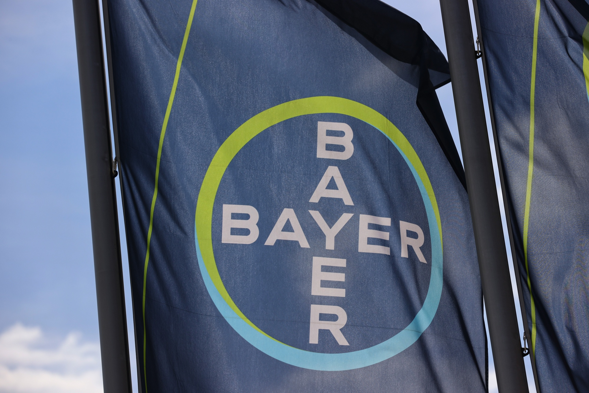 Bayer Warned Of Essure Complaint Rise Long Before Sales Halt Bloomberg