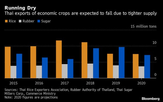 Thai Agriculture Reels From Drought in Blow to Ailing Economy