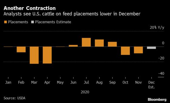 Burger Inflation Builds With Corn Surge Shrinking Cattle Lots