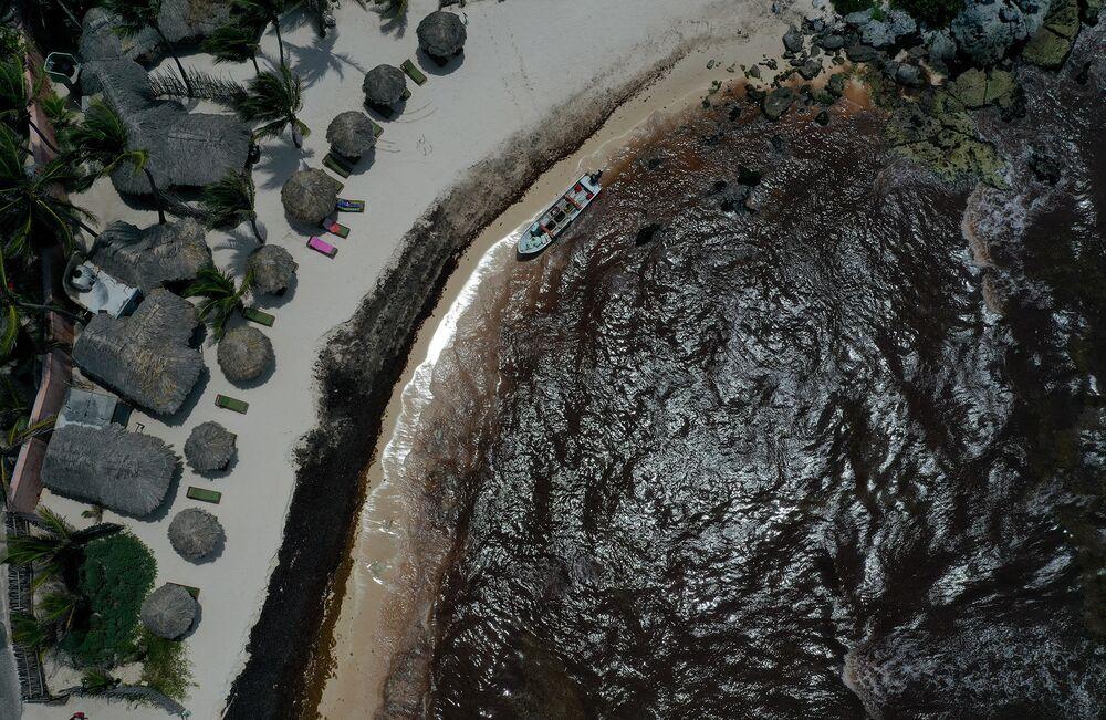 Cancun Seaweed 2019: Airport, Hotels, Beaches See Fewer Travelers