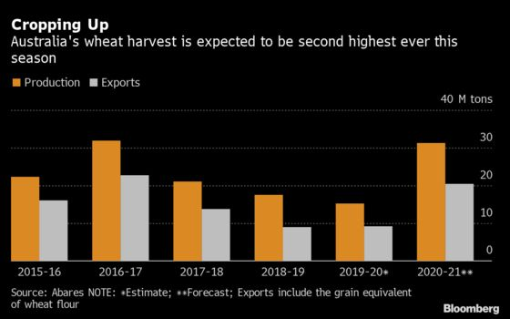Wheat Exporters in Australia Look Past China to North Africa