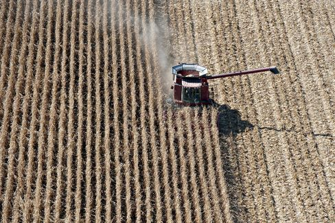 Crop Surge Drives U.S. Export Boom as Obama Channels Kansas