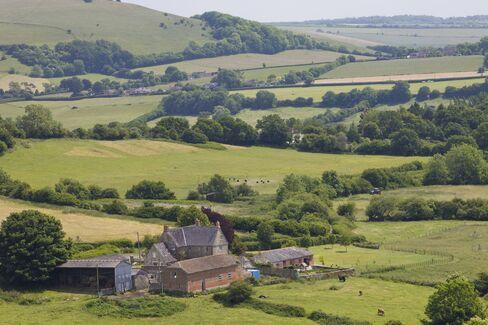 Farm House in Dorset
