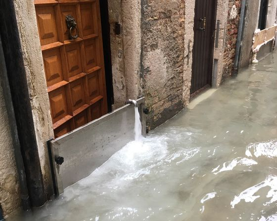 To Save Venice After Its Latest Flood, You Can Adopt aPieceof It